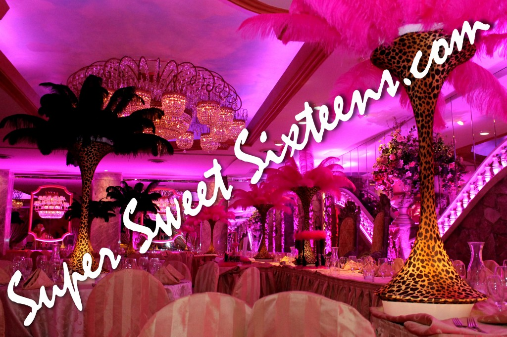 Sweet 16 Party Planning Long Island Ny Super Sixteens